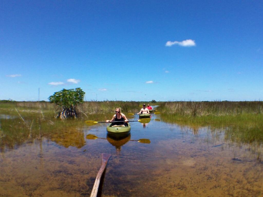 Everglades tours eco tours everglades adventure tours for Everglades city fishing