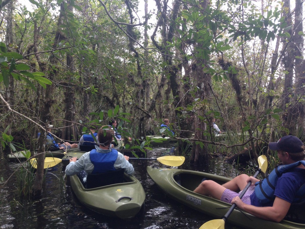 Everglades Adventure Tours Kayak Tour