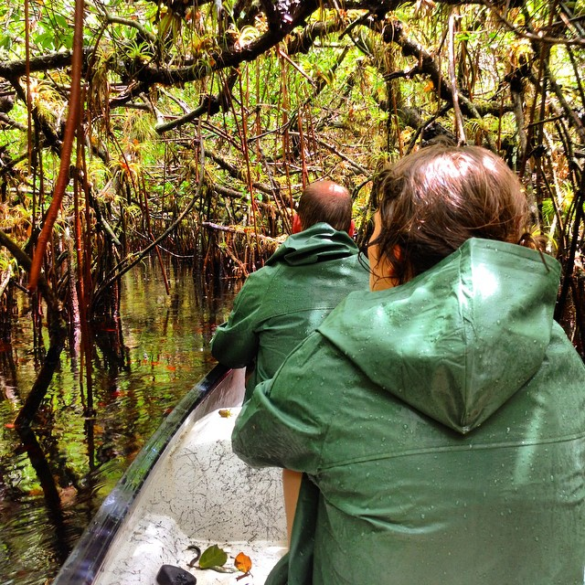 Our #everglades #nationalpark #poleboat #ecotour is #bucketlist worthy. Ask #tripadvisor !