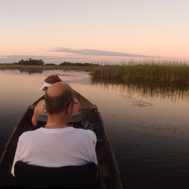 Great #everglades Sunrise tour at #evergladesadventuretours.