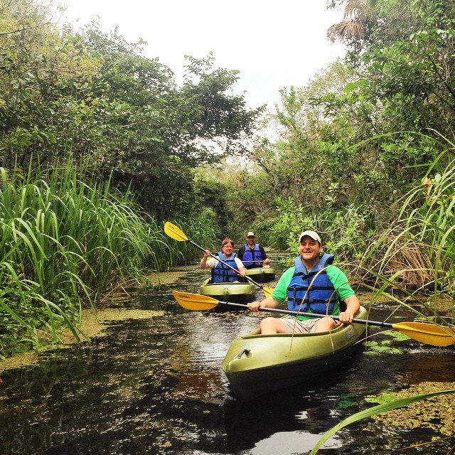 #kayak #ecotour in the #everglades .#lovefl #paradisecoast #Evergladesadventuretours