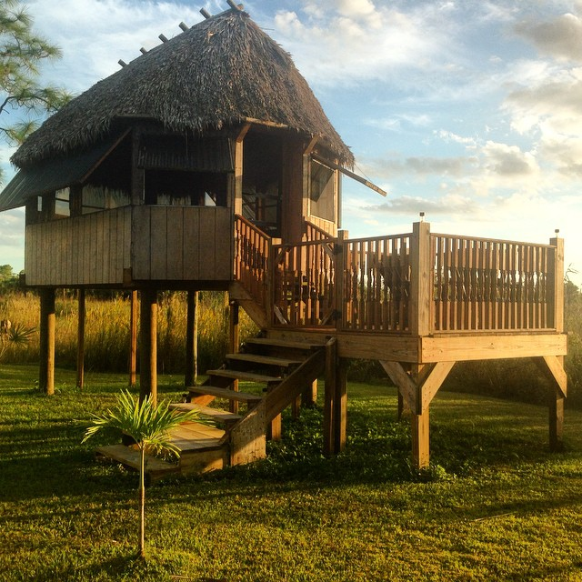 #swamp#glamping#tinyhouse#Evergladesadventuretours
