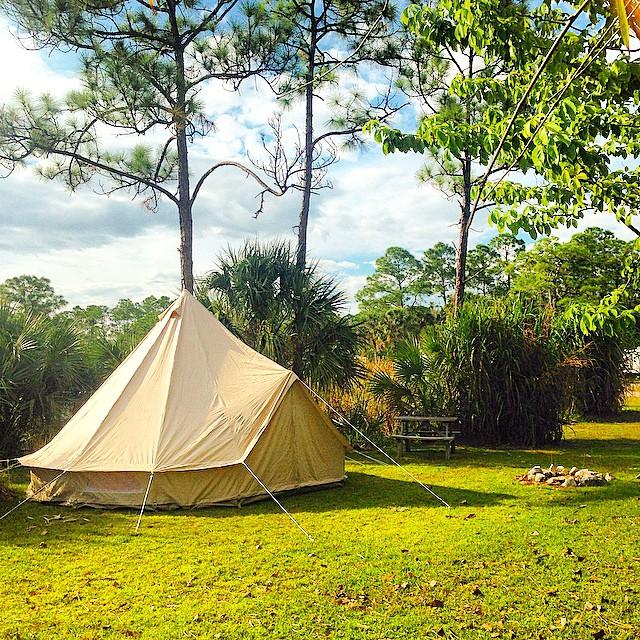#everglades#safari#glamping#Evergladesadventuretours